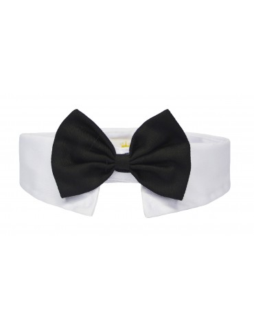 Bow-Tie Collar Elegance Black