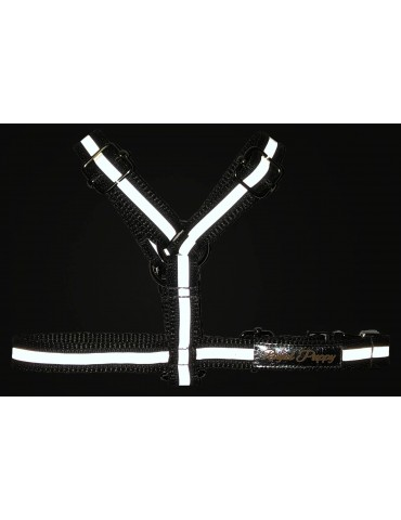 Szelki guard Reflective -...