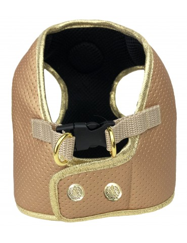 Harness  Type C Beloved Gold