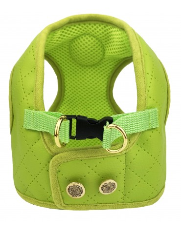 Harness Type C Beloved Lime
