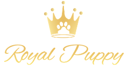 Royal Puppy